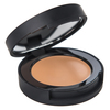 BareMinerals Correcting Concealer SPF 20 Tan 2 2 g